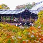 旅吟:秋の日本俳句旅寄稿(シャーロット俳句会より)